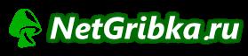 NetGribka.ru